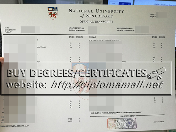buy a National University of Singapore academic transcript