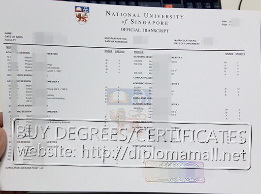 National University of Singapore transcript